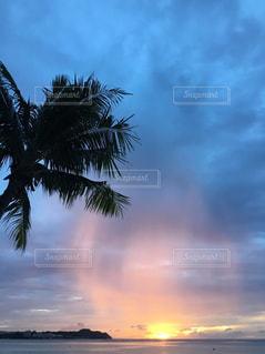 海の写真・画像素材[290757]
