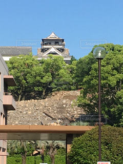 熊本の写真・画像素材[291031]