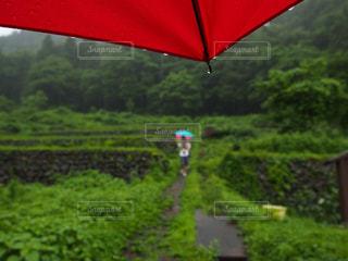 風景 - No.301199