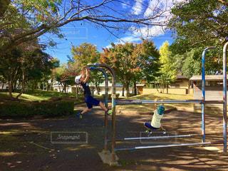 公園の写真・画像素材[292496]