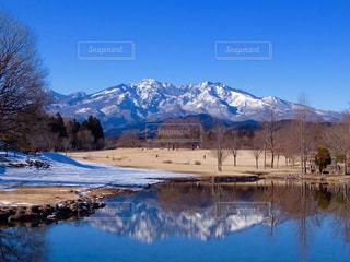 冬の写真・画像素材[329661]