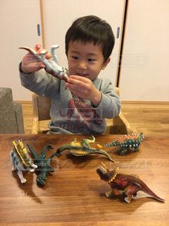恐竜好きの男の子の写真・画像素材[971002]
