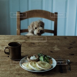 犬の写真・画像素材[1472]