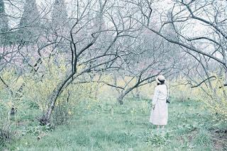 麦わら帽子の少女の写真・画像素材[1149575]