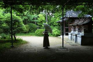 紫陽花寺の写真・画像素材[3329675]