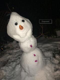 雪の写真・画像素材[293142]