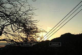 夕景の写真・画像素材[293307]