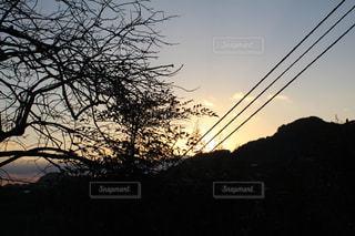 夕景の写真・画像素材[293309]