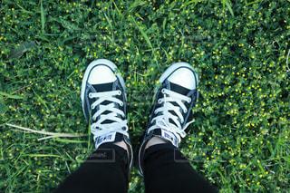 草の中に立っている男の人の写真・画像素材[1142336]