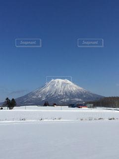 冬の写真・画像素材[459956]