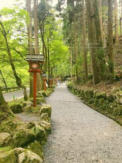 貴船神社に続く道の写真・画像素材[2090222]