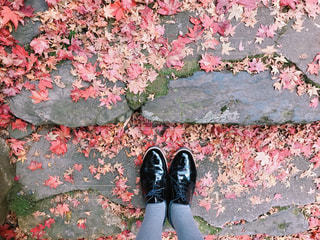紅葉と私の足元の写真・画像素材[2855769]