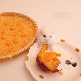 食べ物の写真・画像素材[1681]