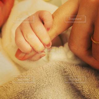 子どもの写真・画像素材[294981]