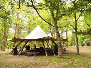 キャンプの写真・画像素材[696526]