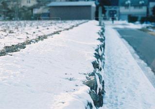 雪に覆われた通り - No.897781