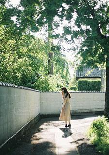 男と女の木の隣に道を歩いての写真・画像素材[1285602]