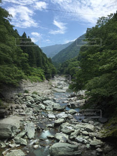 自然の写真・画像素材[295480]