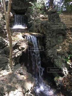 近くの木の横にある岩をの写真・画像素材[1185601]