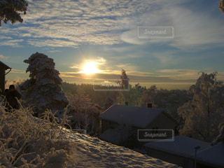 冬の写真・画像素材[296973]