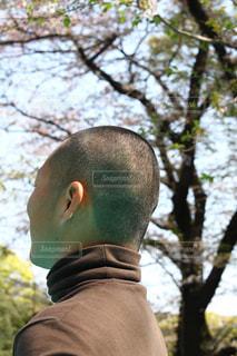 森の前に立っている男の写真・画像素材[1099620]