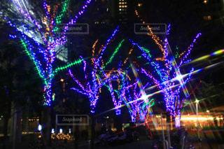 市では、紫色の光の写真・画像素材[1635519]