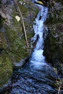 森の中の大きな滝の写真・画像素材[1734026]