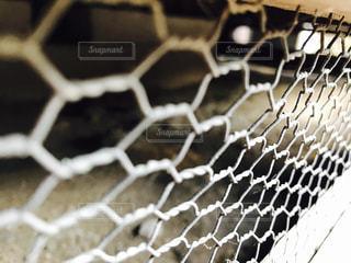 フェンスの写真・画像素材[306333]