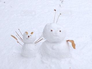 冬 - No.297953