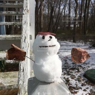 冬の写真・画像素材[309334]