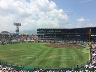 野球の写真・画像素材[297733]