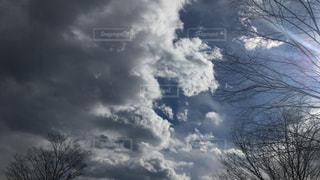 自然の写真・画像素材[467698]