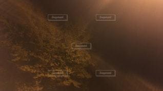 自然の写真・画像素材[467819]