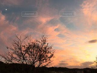 雲の写真・画像素材[298359]