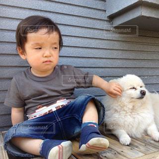 犬とオレの写真・画像素材[299430]