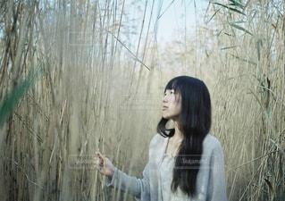 女性 - No.8884
