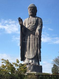 阿弥陀像の前に立っての写真・画像素材[1511763]