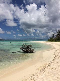 南国 プール 海 サイパン ハワイ グアム オーシャンビュー 浜辺の写真・画像素材[300739]