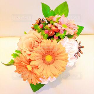 花の写真・画像素材[331727]