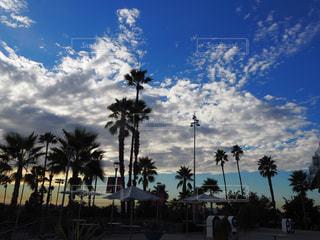 ロサンゼルスの写真・画像素材[300370]