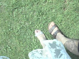 芝生の一歩の写真・画像素材[952882]