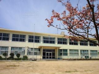 春の学校の写真・画像素材[957719]