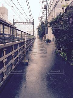 雨の写真・画像素材[301269]