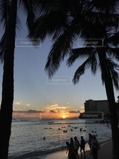 夕景の写真・画像素材[679671]