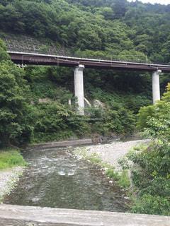 川 鉄橋 夏の写真・画像素材[301729]