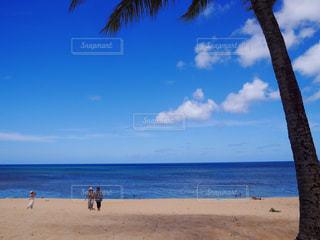 海の写真・画像素材[306521]
