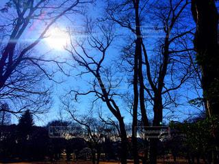 公園 - No.302773