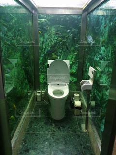トイレと窓付きのバスルームの写真・画像素材[1149635]