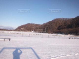 冬の写真・画像素材[310533]