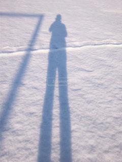 冬の写真・画像素材[310535]
